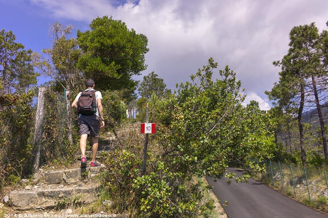 Trekking Liguria