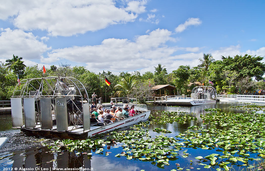 Florida alligator farm