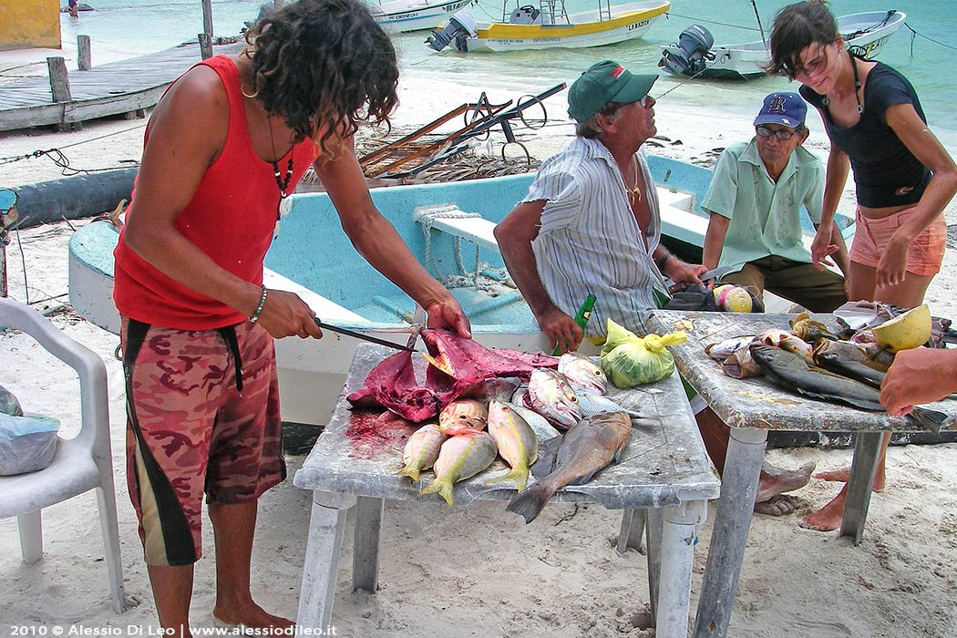 Holbox pesca
