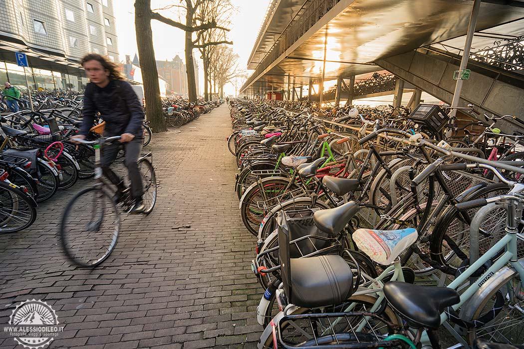 In bicicletta per Amsterdam