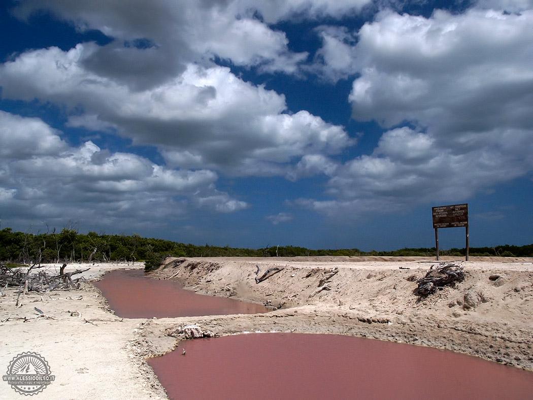 Rio lagartos saline
