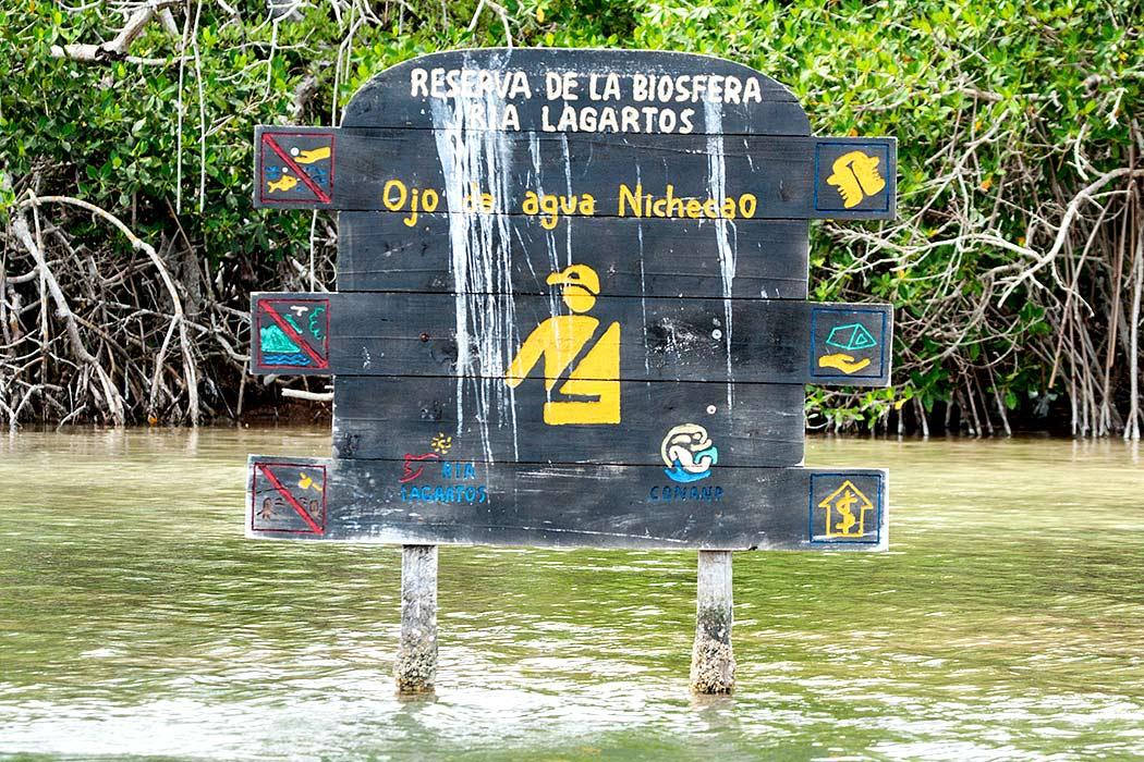 Riserva biosfera rio lagartos