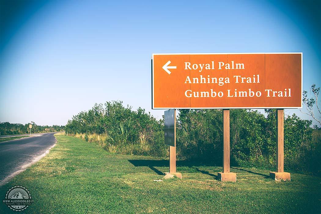 Anhinga trail, il percorso più famoso della Florida