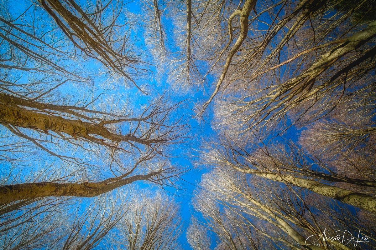 Fotografare autunno