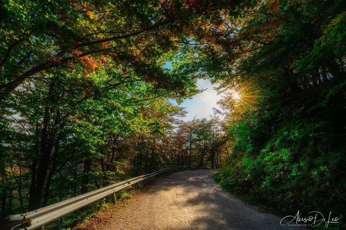 Ridracoli foreste casentinesi