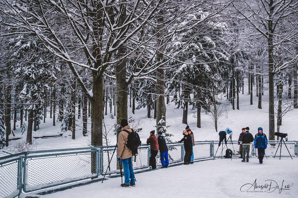 bayerische park