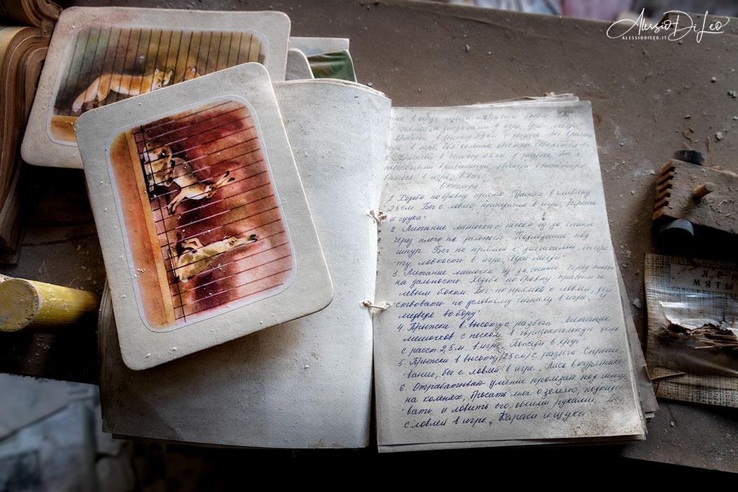 Pripyat school